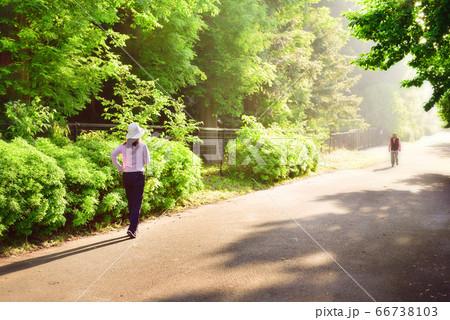 早朝に太陽の方角へジョギングする女性 02 66738103