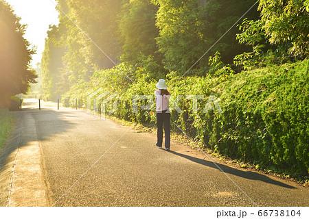 早朝に太陽の方角へジョギングする女性 03 66738104