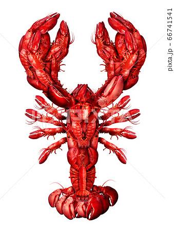 Lobster Symbol 66741541