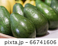 Green avocado on grocery shelf. Close-up of vitamin healthy fruits in supermarket. Fresh organic food, healthy eating, seasonal vitamins. 66741606