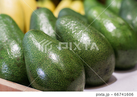 Green avocado on grocery shelf. Close-up of vitamin healthy fruits in supermarket. Fresh organic food, healthy eating, seasonal vitamins. 66741606