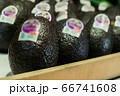 Close-up of delicious blue avocado on shelf in grocery. Vitamins, fresh organic food, healthy eating. 66741608