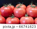 Red tomatoes with water drops on black background. Close-up of tasty fresh organic vegetables on store shelf for sale. Vegan food, healthy eating, healthful product. 66741623