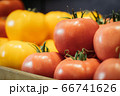 Close-up of red wet tomatoes with yellow vegetables at the background. Fresh tasty organic agricultural products lying on shelf in grocery. Healthy food, vitamin eating, assortment. 66741626