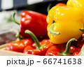 Side view of yellow bell pepper lying on red peppers on the shelf. Close-up of fresh agricultural vegetables in grocery. Vegeterian food, dieting, healthy eating. 66741638