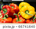 Close-up of red and yellow pepper lying on shelf in grocery. Colorful vegetables for sale in retail shop. Vegan food, healthy eating, bell pepper. 66741640