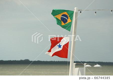 アマゾンの風になびくブラジル国旗とパラー州旗 66744385