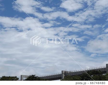 千葉公園から見た青空とモノレール 66748480