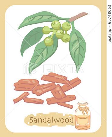 ウッド サンダル