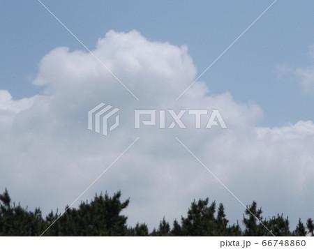 稲毛海浜公園から見た青い空と白い雲 66748860