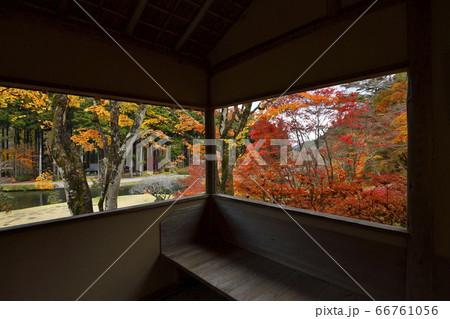 東屋の窓から臨む赤、黄色の染まった紅葉 66761056