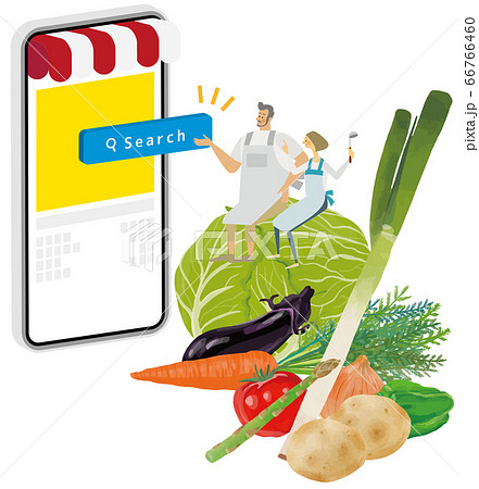 野菜に乗って料理アプリを使用する夫婦 66766460