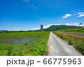 上山市 スカイタワー シンボル 高層ビル 田舎 66775963