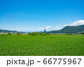 上山市 スカイタワー シンボル 高層ビル 田舎 66775967