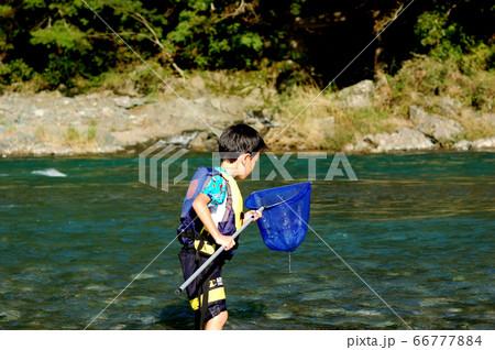 徳島県美馬市の穴吹川で網で魚獲り、川遊びする男の子 66777884