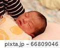 新生児 66809046