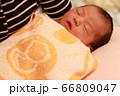 新生児 66809047