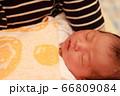 新生児 66809084
