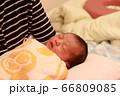 新生児 66809085