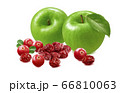 Green apples, fresh and dry cranberries isolated on white background 66810063