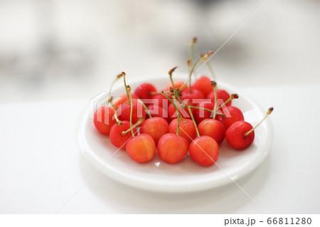 美味しそうなさくらんぼ perming 季節の食材 写真素材 66811280