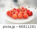 美味しそうなさくらんぼ perming 季節の食材 写真素材 66811281