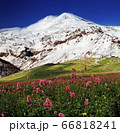 View on mountain Elbrus. 66818241