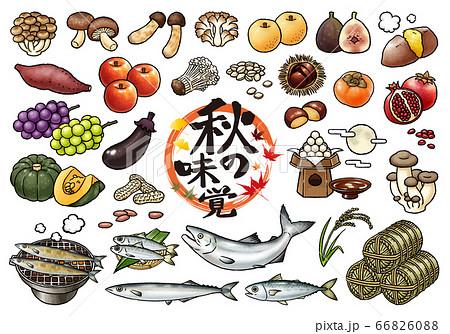秋の味覚・食欲の秋 手描きベクターイラストセット 66826088
