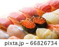 寿司 66826734