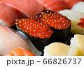 寿司 66826737