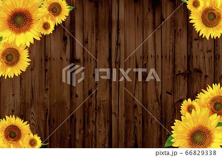 茶色の木目とひまわりのフレーム 2781B 66829338