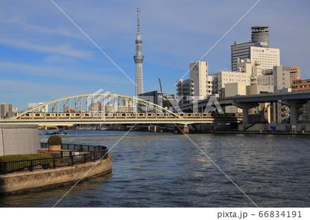 鉄橋を渡る総武線の電車と東京スカイツリー 66834191