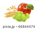 Red apple, green grapes, wheat and oat ears isolated on white background 66844474