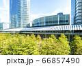 緑の多いオフィス街の風景 66857490