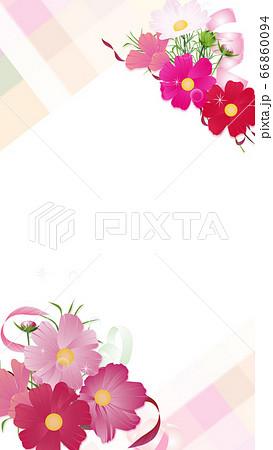 コスモスの花束とリボンのワイドバーチャル背景素材縦型 66860094