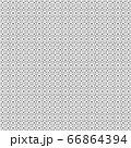 Grid stripe seamless pattern. 66864394