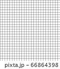 Grid stripe seamless pattern. 66864398