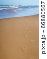 Footprints in sand at beach leading towards sea 66880567