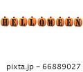 ハロウィンかぼちゃ 66889027
