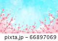 花 青空 水彩風  66897069