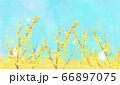 花 青空 水彩風  66897075