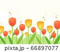 花 水彩風  66897077