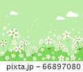 花 水彩風  66897080