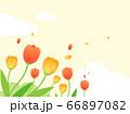 花 水彩風  66897082
