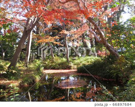 東京都大田区蘇峰公園 66897684