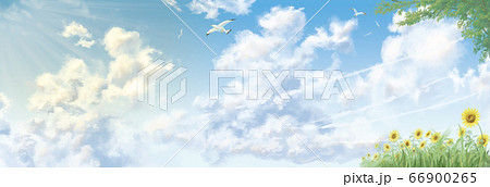 積乱雲のある夏の空、近景に草木【入道雲】 66900265