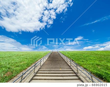 初夏の青空と新緑の野原、そしてまっすぐ伸びる階段 66902015