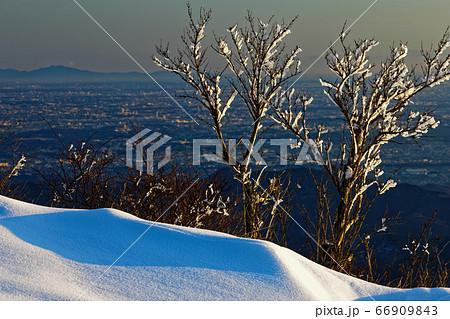 丹沢・塔ノ岳の樹氷と関東平野の町並み・筑波山遠望 66909843