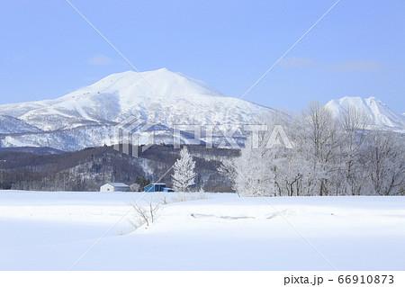 北海道倶知安町の霧氷林とニセコ連峰 66910873
