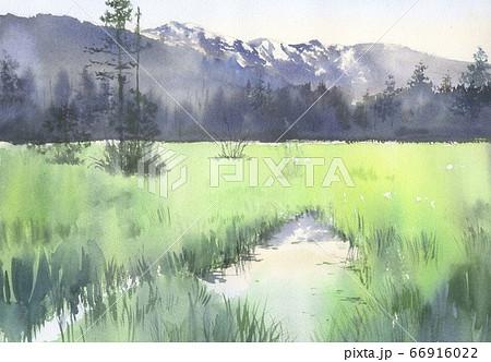 水彩画 上高地 66916022